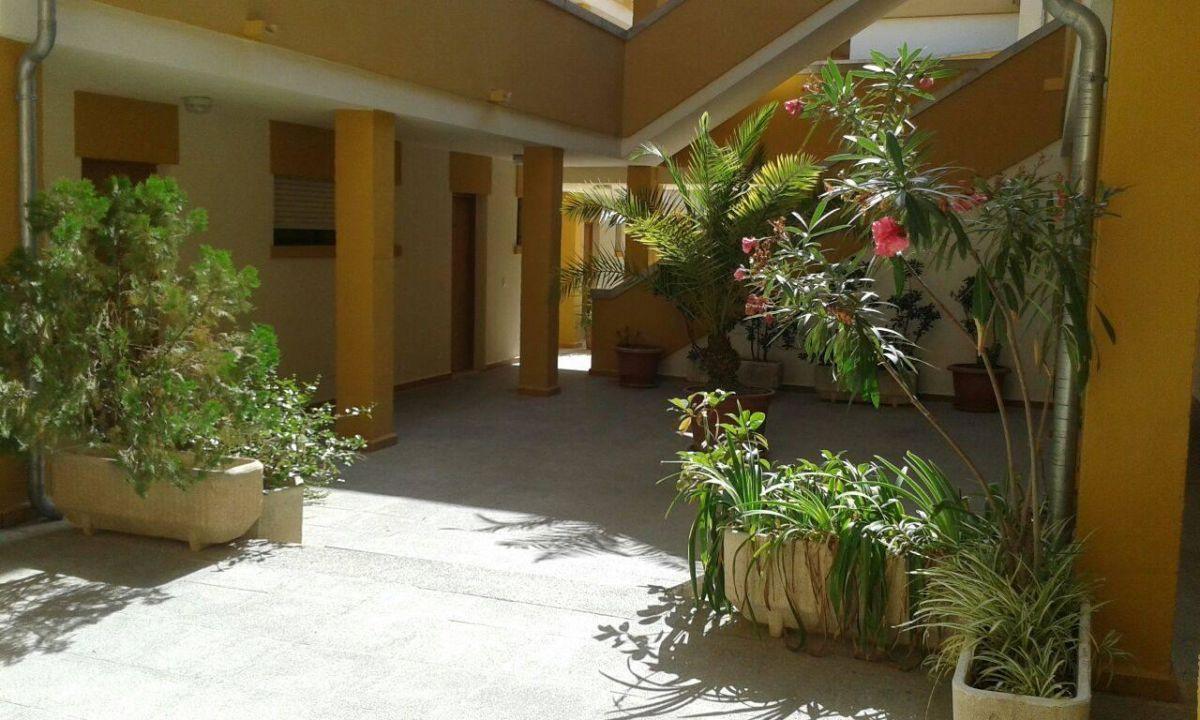 Bild Quot Innenhof Der Appartments Quot Zu Apartments Flor Los Almendros In Peguera