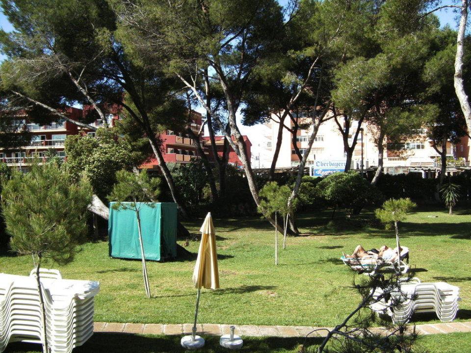 Garten Hotel Riu Bravo