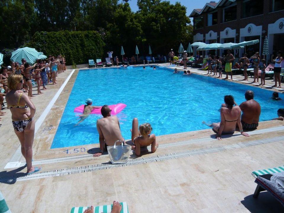 La piscine Hotel Cactus Mirage Family Club