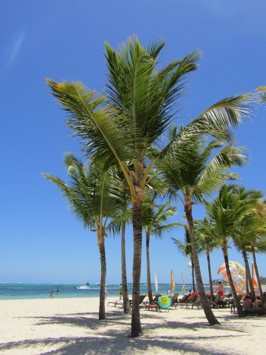 Strand Secrets Royal Beach Punta Cana - Adults only