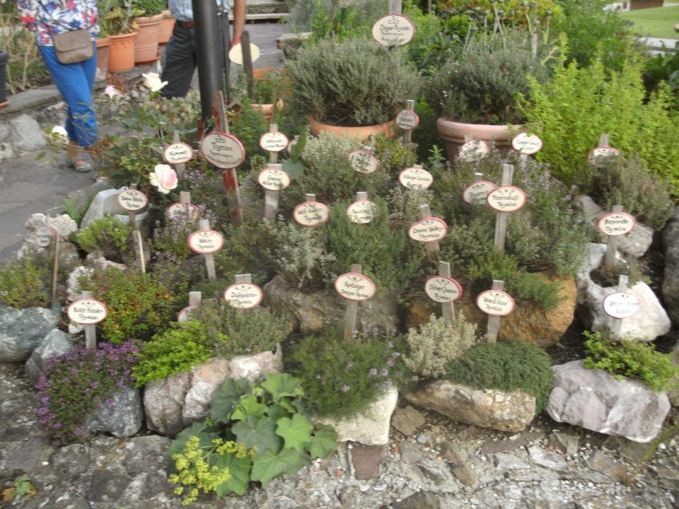 Garten gestalten mediterran
