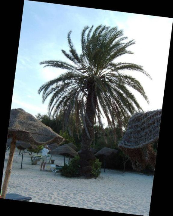 Strand des Houria Palace Hotel Houria Palace
