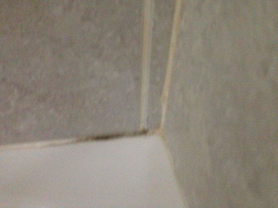 schwarzer schimmel im bad hotel vila senhora da rocha alporchinhos holidaycheck algarve. Black Bedroom Furniture Sets. Home Design Ideas