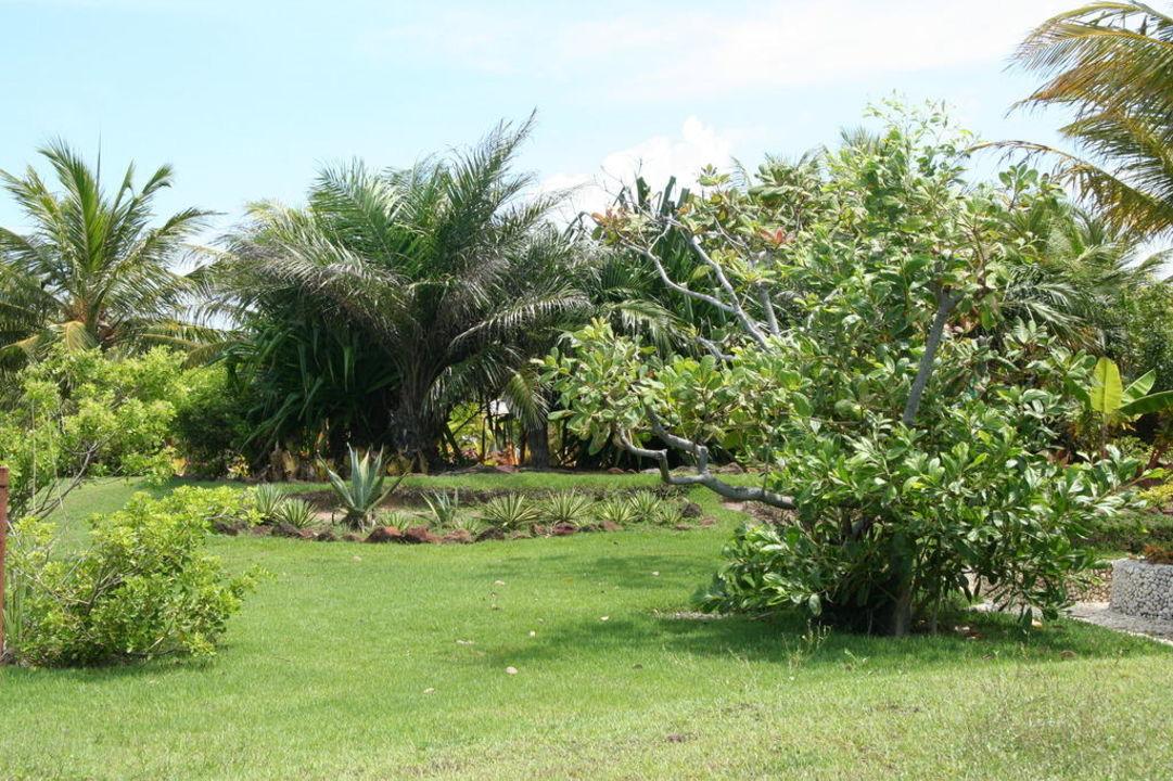 Wellness für die Augen Hotel Estrela do Mar Resort