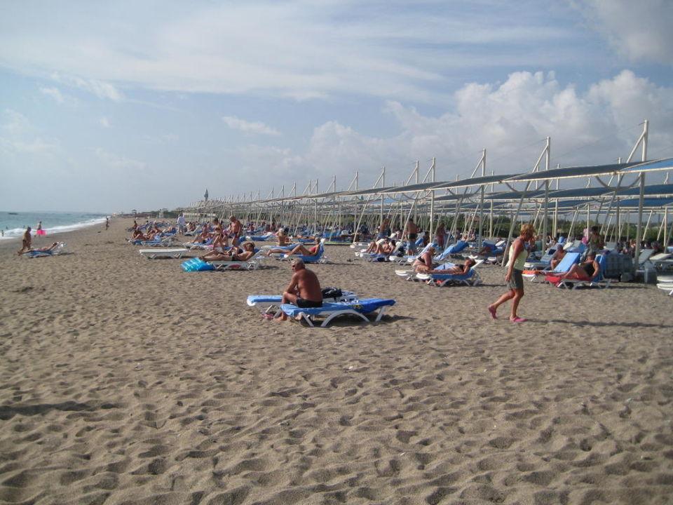 Hotelstrand SunConnect Sea World Resort & Spa