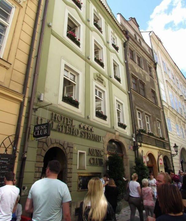 Street view Hotel U Zlateho Stromu