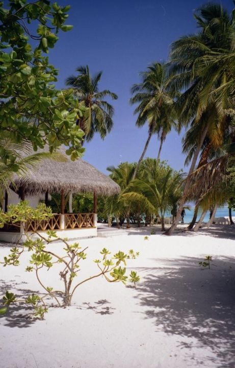 Meeru Strandbar Meeru Island Resort & Spa