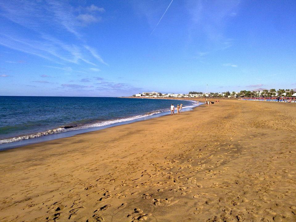 Quot Hotel Strand Playa De Los Pocillos Quot Sentido Aequora Lanzarote In Puerto Del Carmen