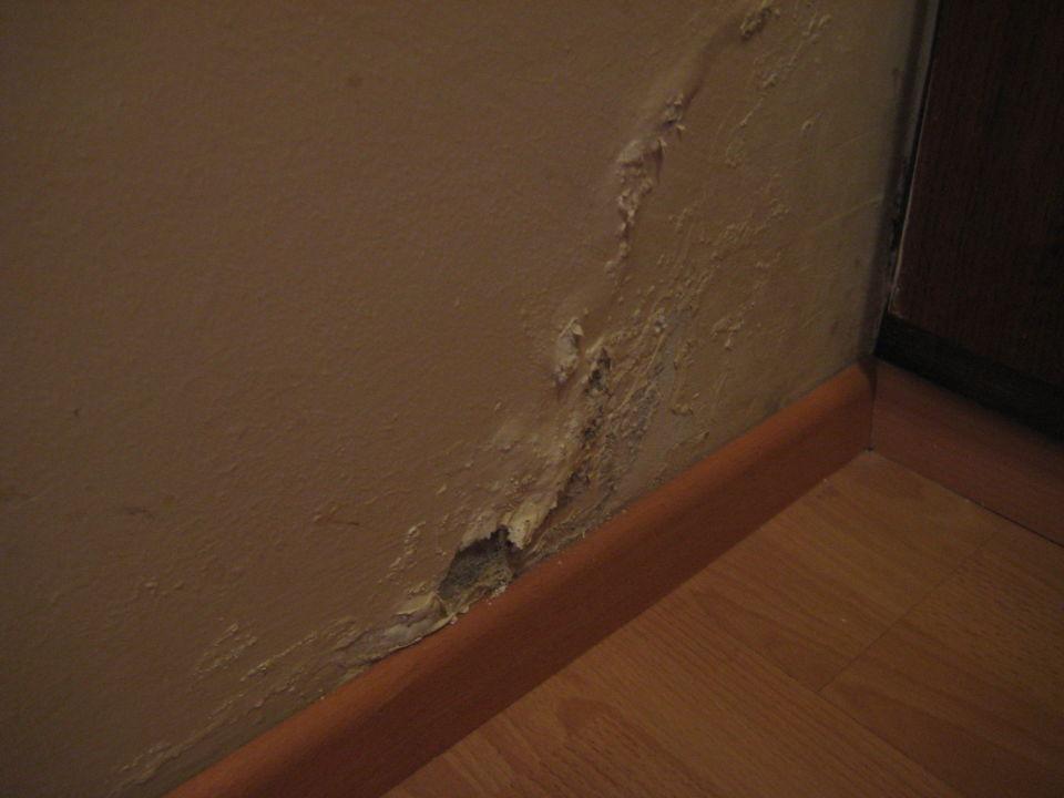 Schimmel und feuchte Wände im Zimmer\