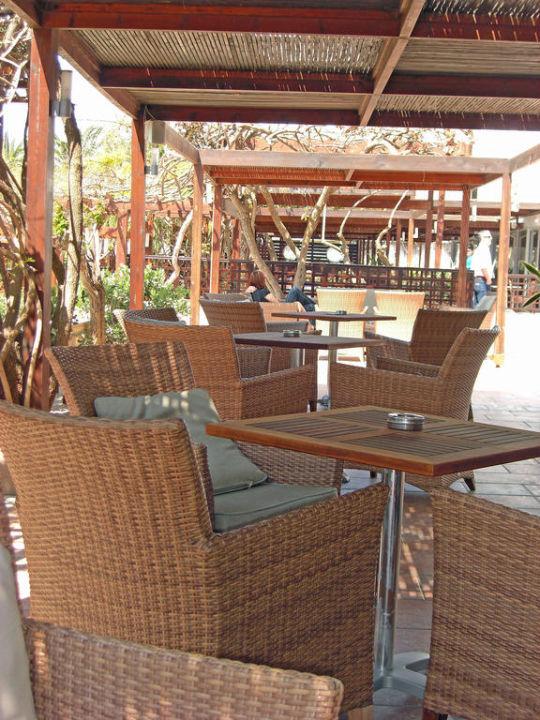 Terrasse Hotel Nissi Beach Resort