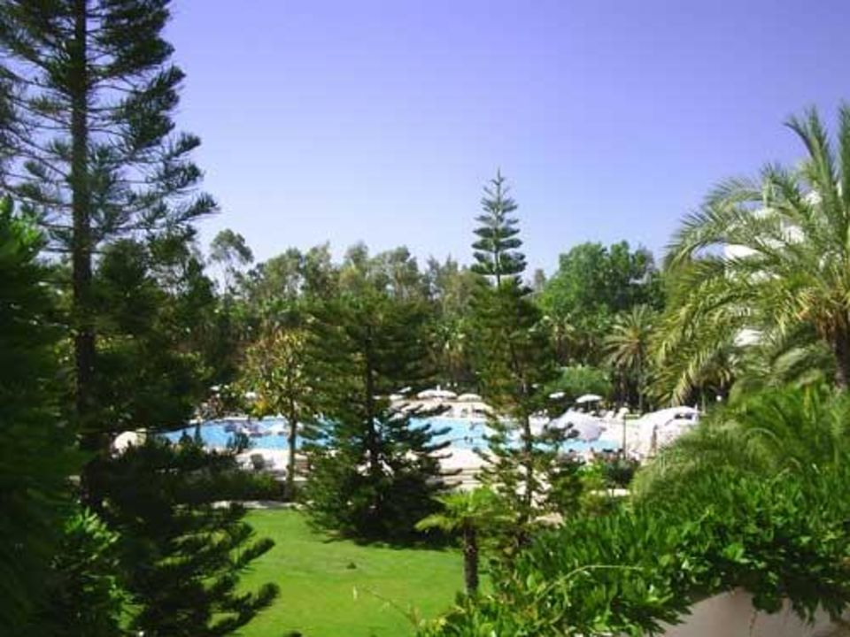 Pool und Garten Top Hotel