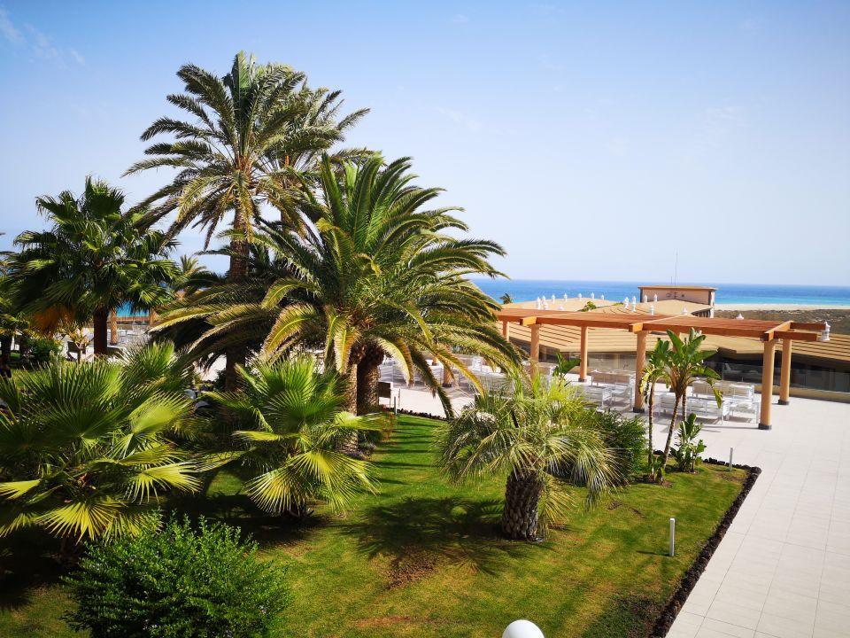 Gartenanlage Iberostar Selection Fuerteventura Palace