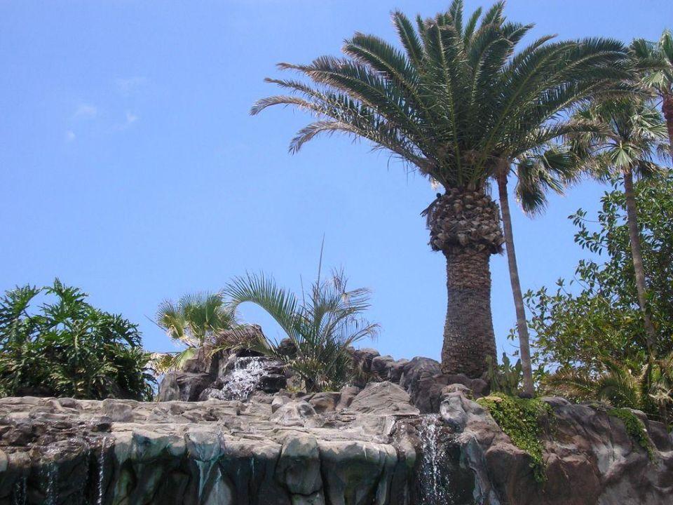 Gartengestaltung Conquistador Hotel H10 Conquistador