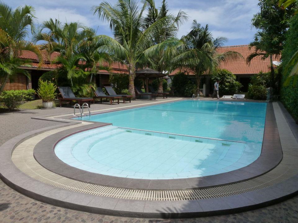 Pool Hotel Tulips