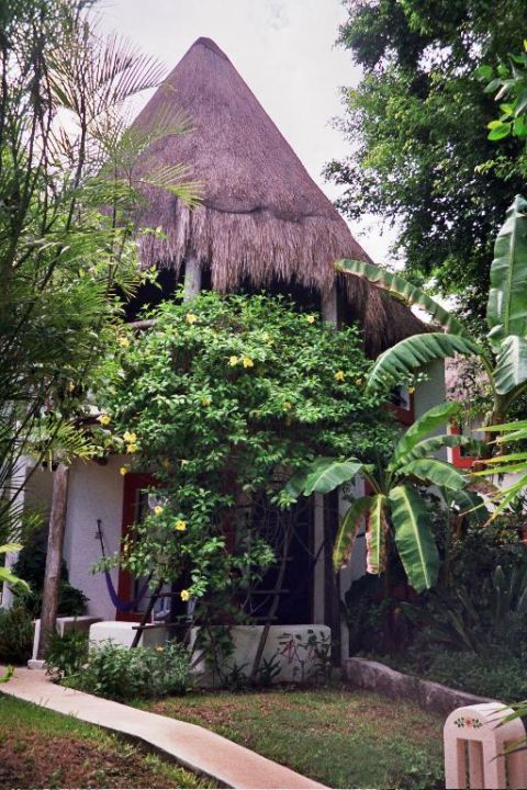 Landestypische Unterkunft im Hotel Las Palapas Hotel Las Palapas