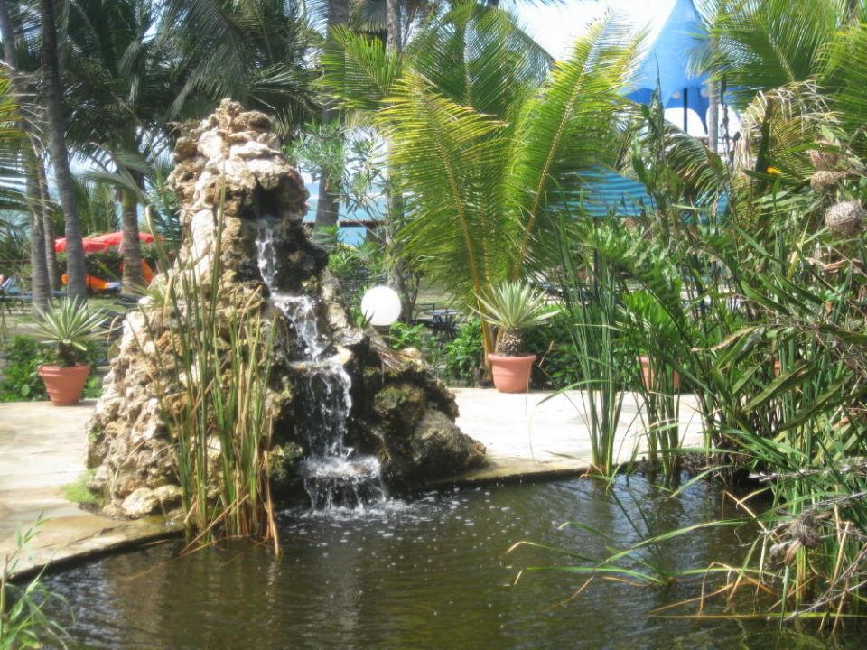 """wasserfall im garten"""" bahari beach hotel in nyali beach, Garten und Bauen"""