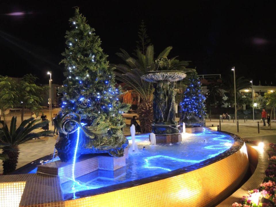 Weihnachtsdeko vorm hoteleingang adri n hoteles jardines for Adrian jardines de nivaria