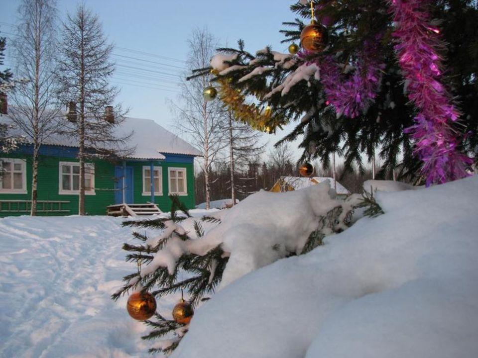 Шарики на елке Tourist Complex Golubino