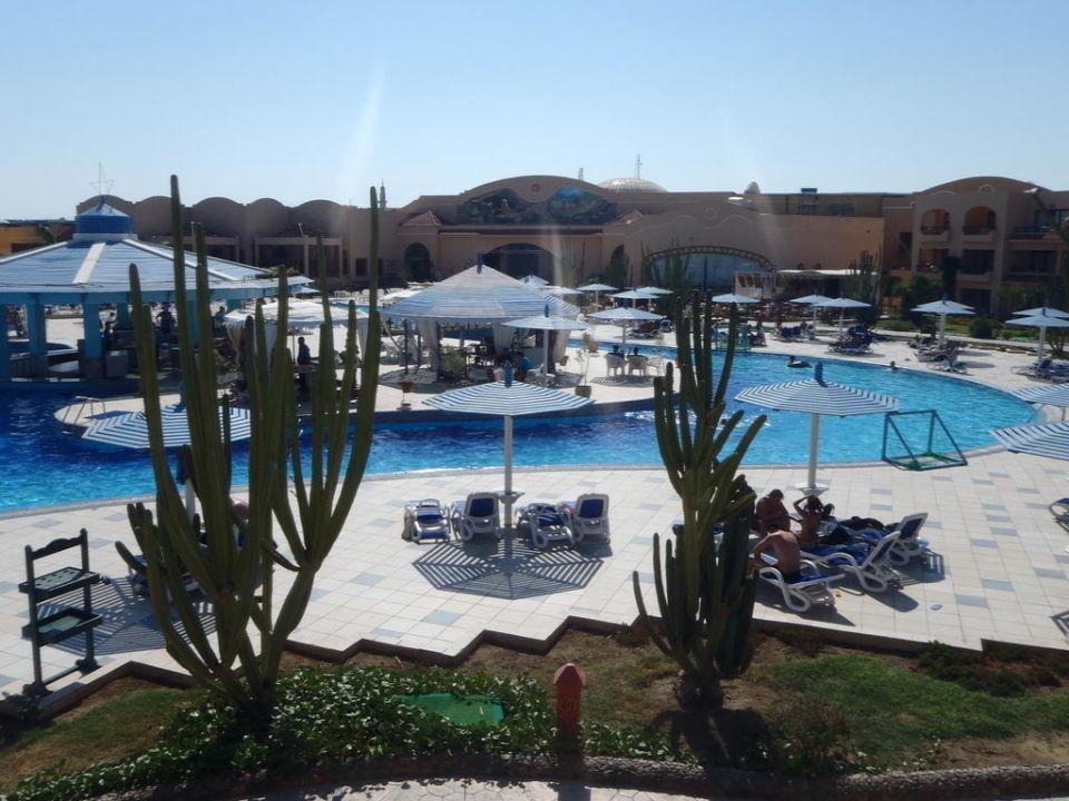Widok z pokoju Hotel Ali Baba Palace