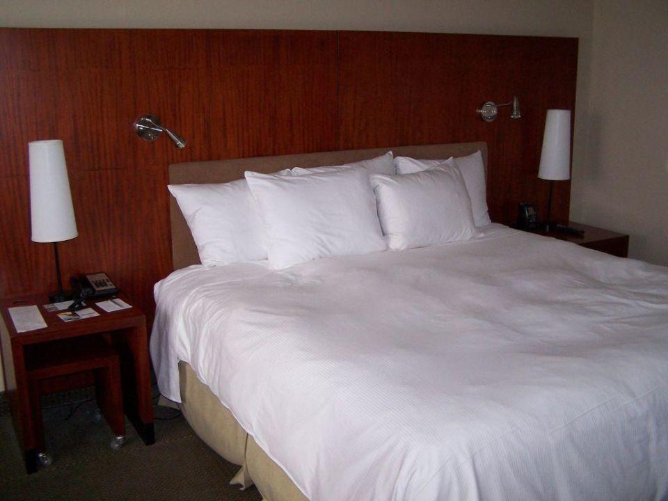 Tolles Hotelzimmer Hotel Hilton Toronto
