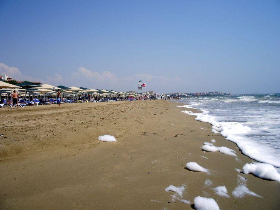 Feinster stinkender Kloakenschaum Miramare Beach Hotel Miramare Beach