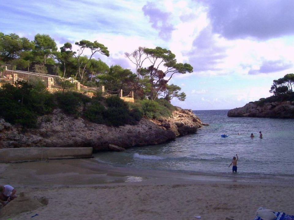 Blick vom Strand auf die Bucht Cala Egos AluaSoul Mallorca Resort - Adults only