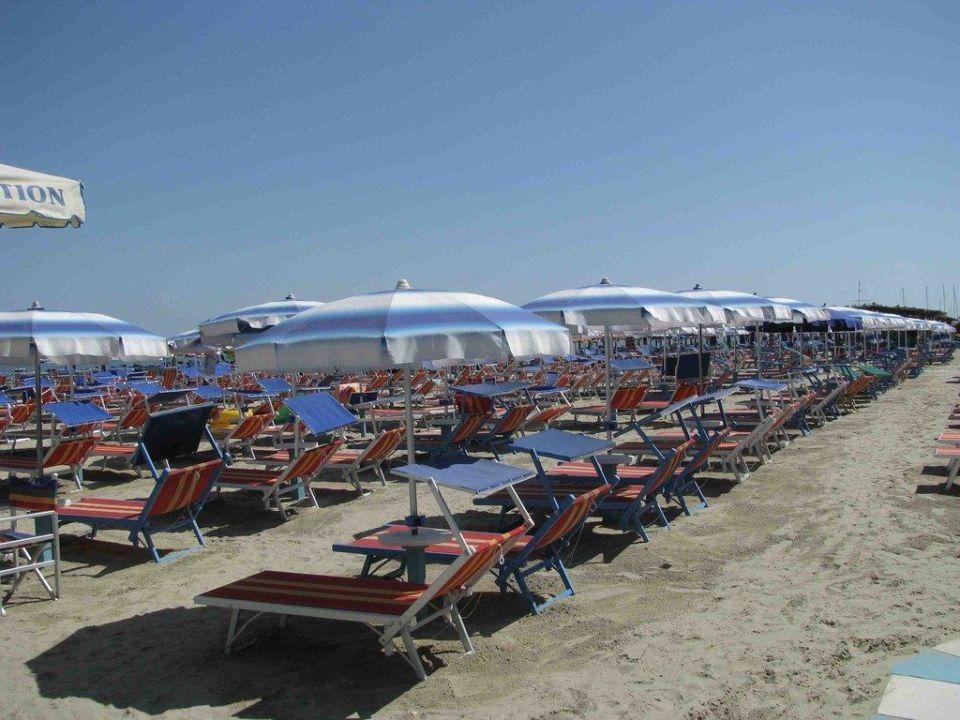 Bagno delio hotel capitol bellaria igea marina - Bagno delio san mauro a mare ...