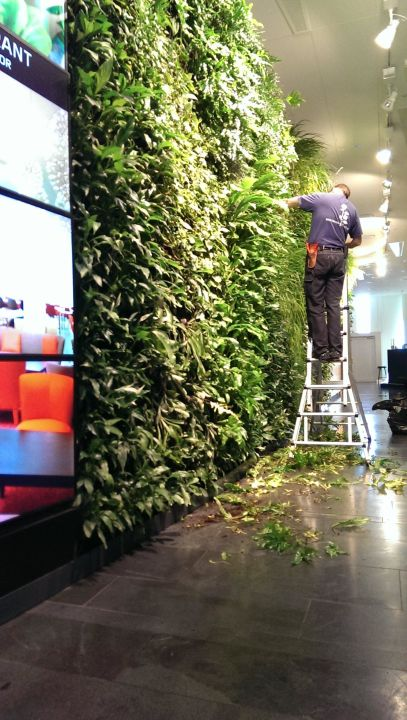 Bepflanzte Wand bepflanzte wand in der lobby ac hotel sky copenhagen