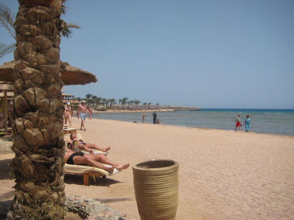 Strand im April Albatros Palace Resort