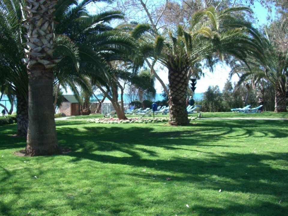Zwischen Outdoor-Pool und Strand Hotel Side Star Elegance