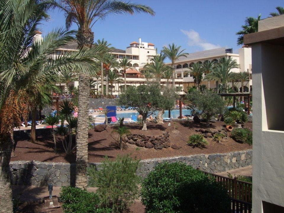 Gartenanlage mit Pool Occidental Jandía Mar