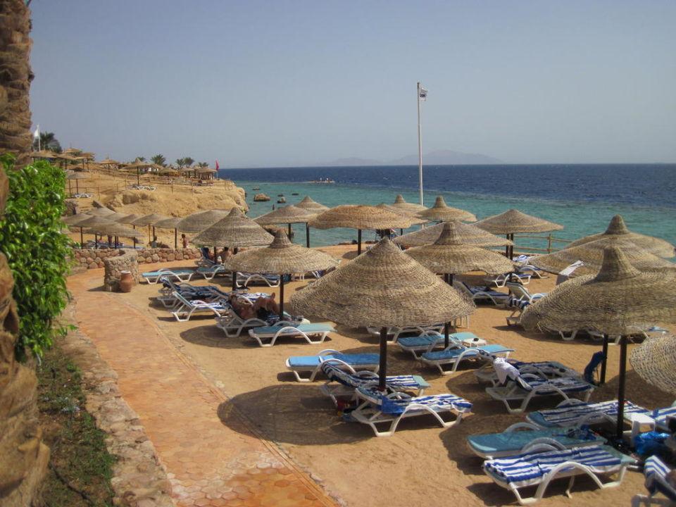 Einer von vier Strandabschnitten SunConnect Sunrise Diamond Resort