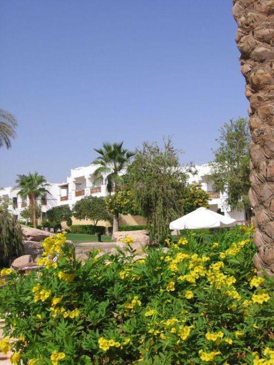 Ogród Shores Amphoras Resort