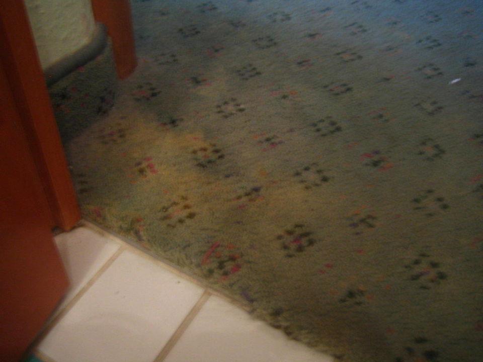 Schimmliger Teppichboden vor Badezimmer\