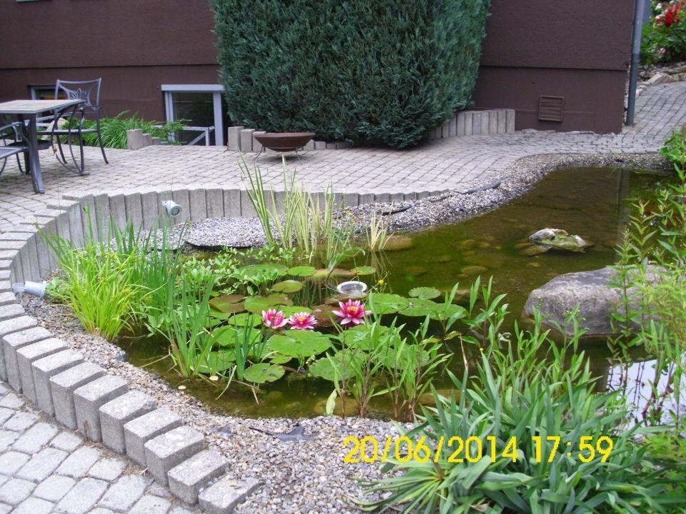 Kleiner teich parkhotel heidehof gaimersheim for Kleiner teich