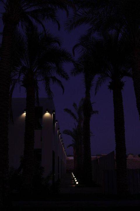 Stilvolle Aussenbeleuchtung Hotel Reef Oasis Beach Resort