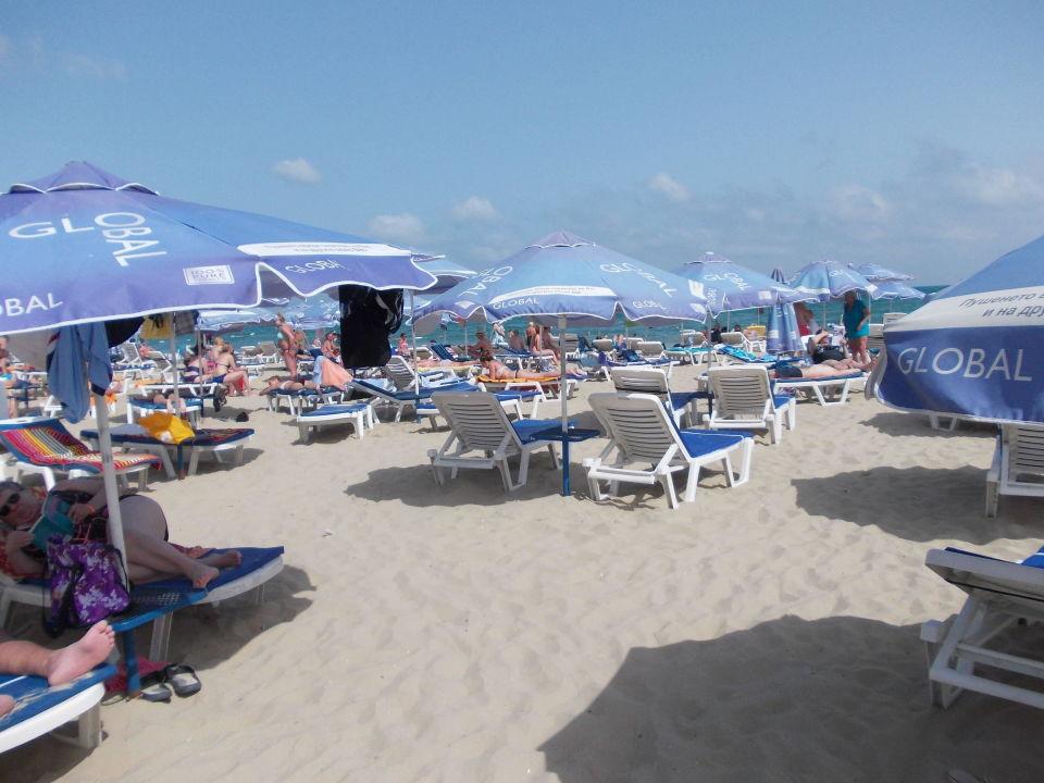 Hotel Strand Vom Hotel Bellevue Beach Hotel Bellevue Sonnenstrand