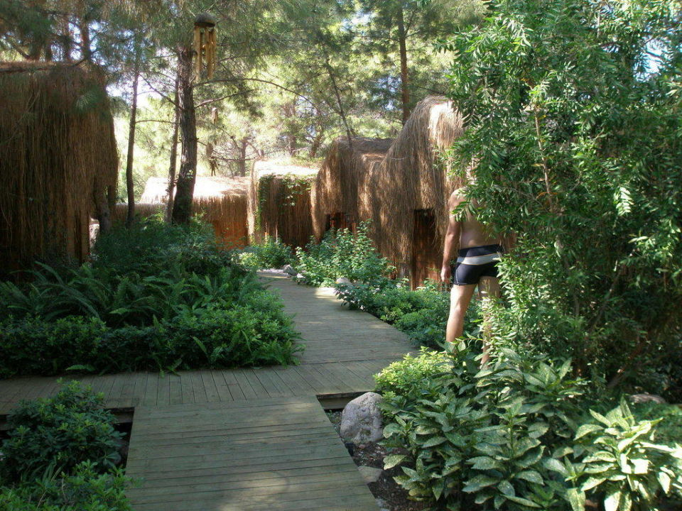 Natural Spa Amara Dolce Vita Luxury