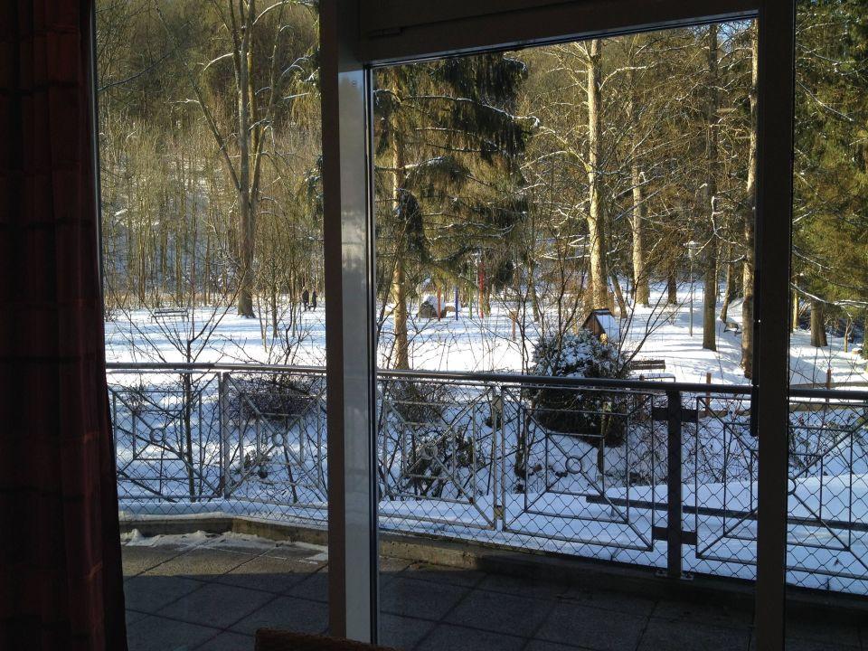 Blick vom Ruheraum ins winterliche Pesenbachtal CURHAUS Bad Mühllacken