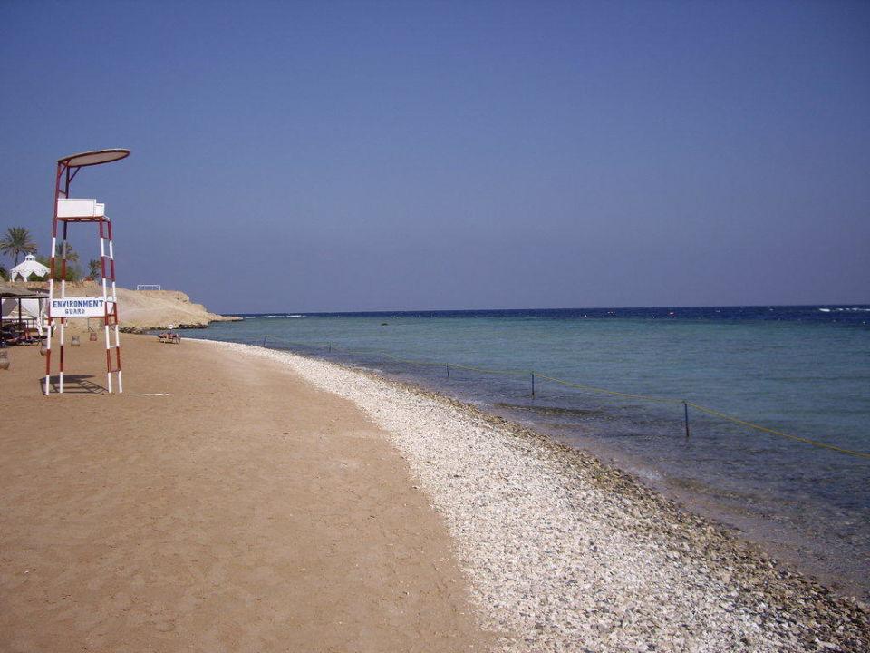 Ohne Kommentar Steigenberger Coraya Beach - Adults only