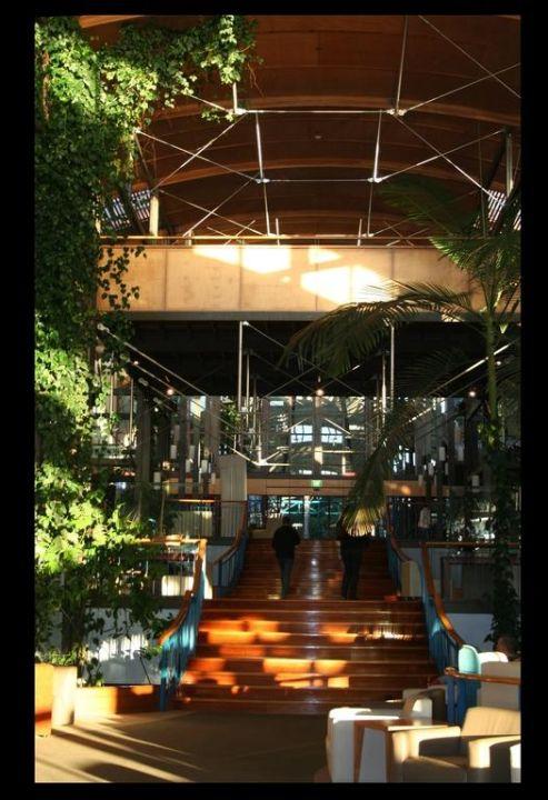 Lobby Kingfisher Bay Resort