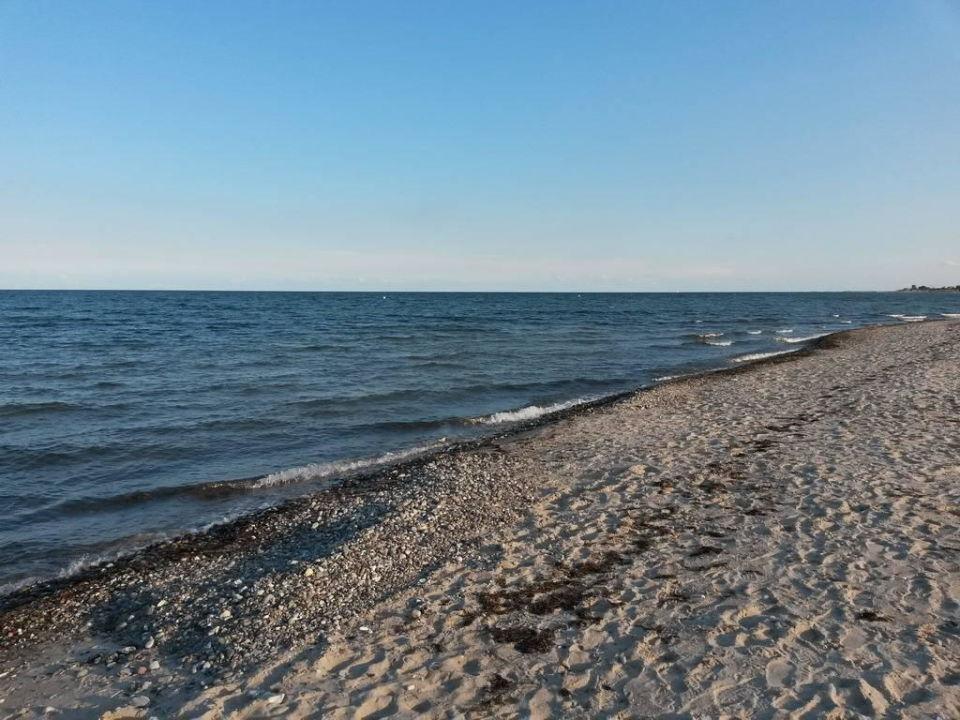 rosenfelder strand fkk
