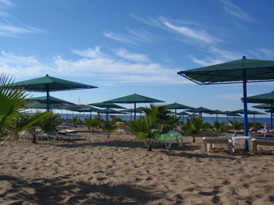 Der wunderschöne Strand am Morgen Paloma Oceana Resort