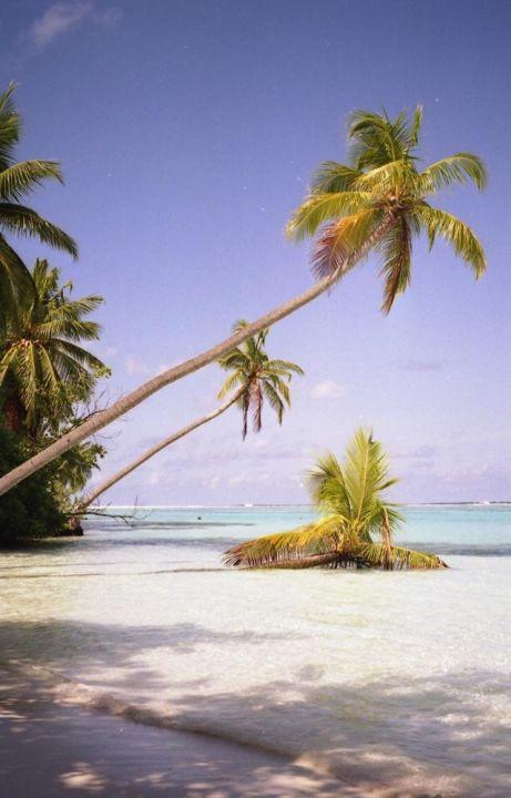 Meerufenfushi Nord Ost Meeru Island Resort & Spa