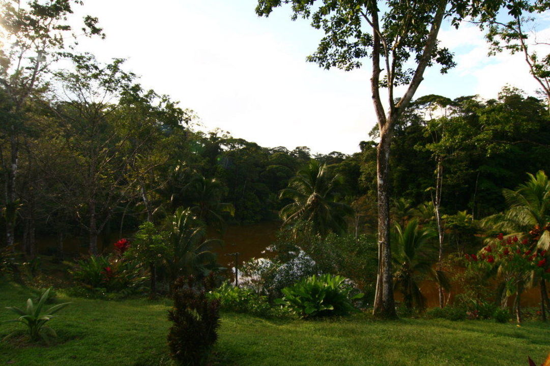 Blick von der Veranda Hotel Laguna del Lagarto Lodge