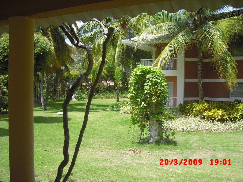 Der Garten zwischen den Bungalows Grand Palladium Bávaro Suites Resort & Spa