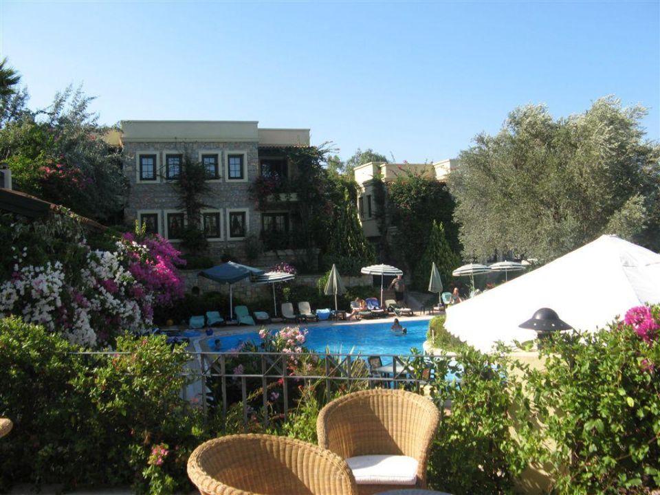 Widok z tarasu Hotel Zeytinada