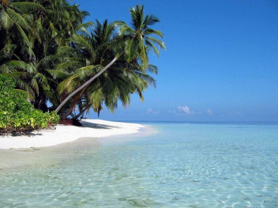 Traumstrand Hotel Fihalhohi Island Resort