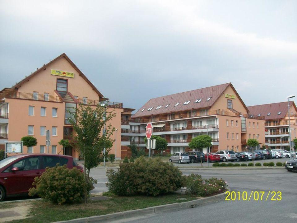 Pool Hotel Vivat