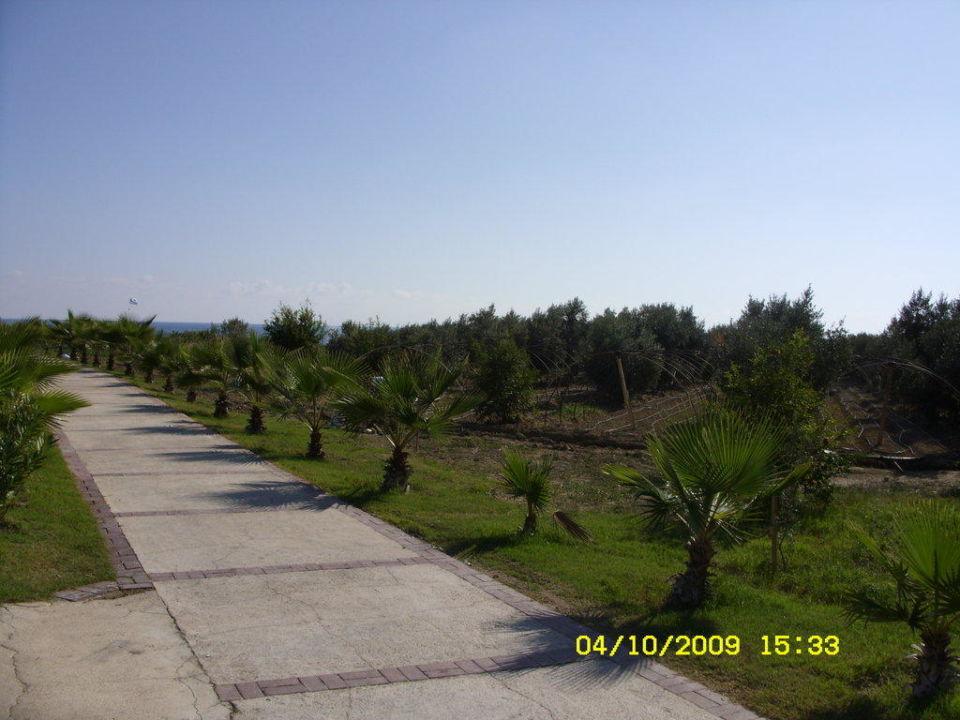 Weg zum Strand Hotel Alba Resort